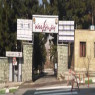 بیمارستان 505 ارتش تهران